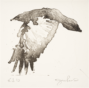 Image of Untitled [Crow in Flight]